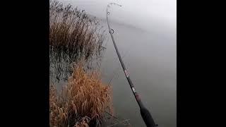 Скачок Адреналина рыбаки поймут щука спиннинг fishing newone