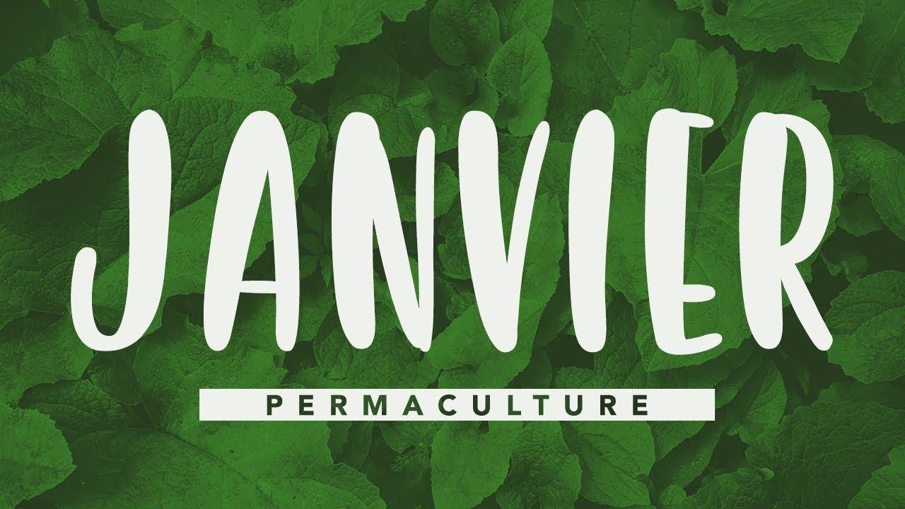 Que Faire Au Jardin En Janvier que faire dans jardin permaculture en janvier ? #permaculture