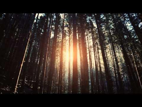 Lux Natura & Tobias - Through the Pines