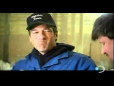 Dirty Jobs With Mike Rowe - Turkey Farm - Arabic translation