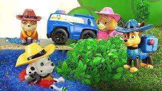 Щенячий патруль мультсериал для детей. Приключения на дороге
