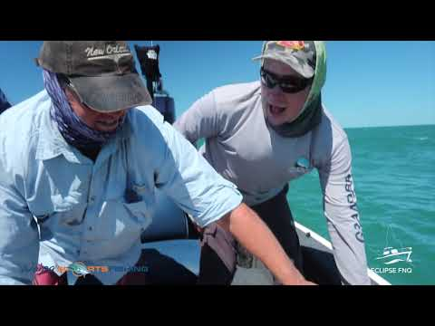 Eclipse FNQ And Weipa Sport Fishing Mothership Charters Cape York