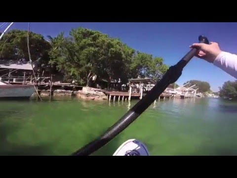 Stand up paddle boarding SUP in Key Largo