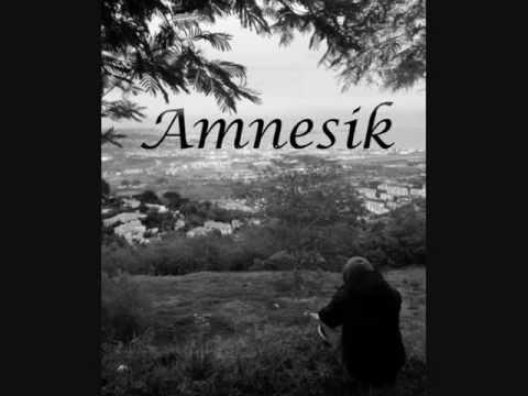 Amnesik-L'incipit