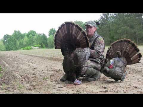 Extreme Up Close North Carolina Turkey Hunt
