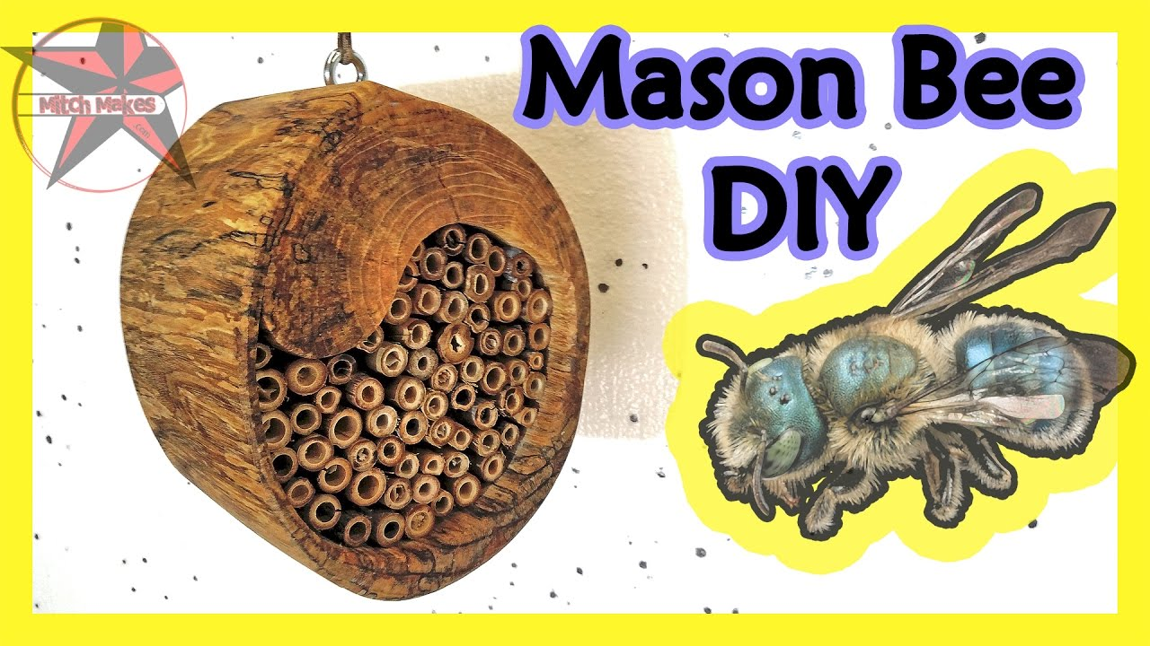 Mason Bee House DIY