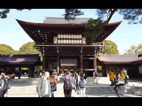 【4K】 [東京散歩]原宿 明治神宮 代々木公園  Walking In Harajuku Meiji Shrine