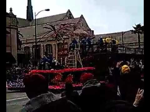 2017 ROSE  🌹 PARADE! Un-bee-liev-able DOGS 🐶 🏄 SURFING FLOAT excerpt