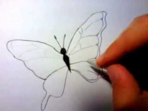 3D Pencil Sketch Of Butterfly