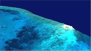 Amazing Underwater 3D FlyThrough: Hogsty Reef, Bahamas