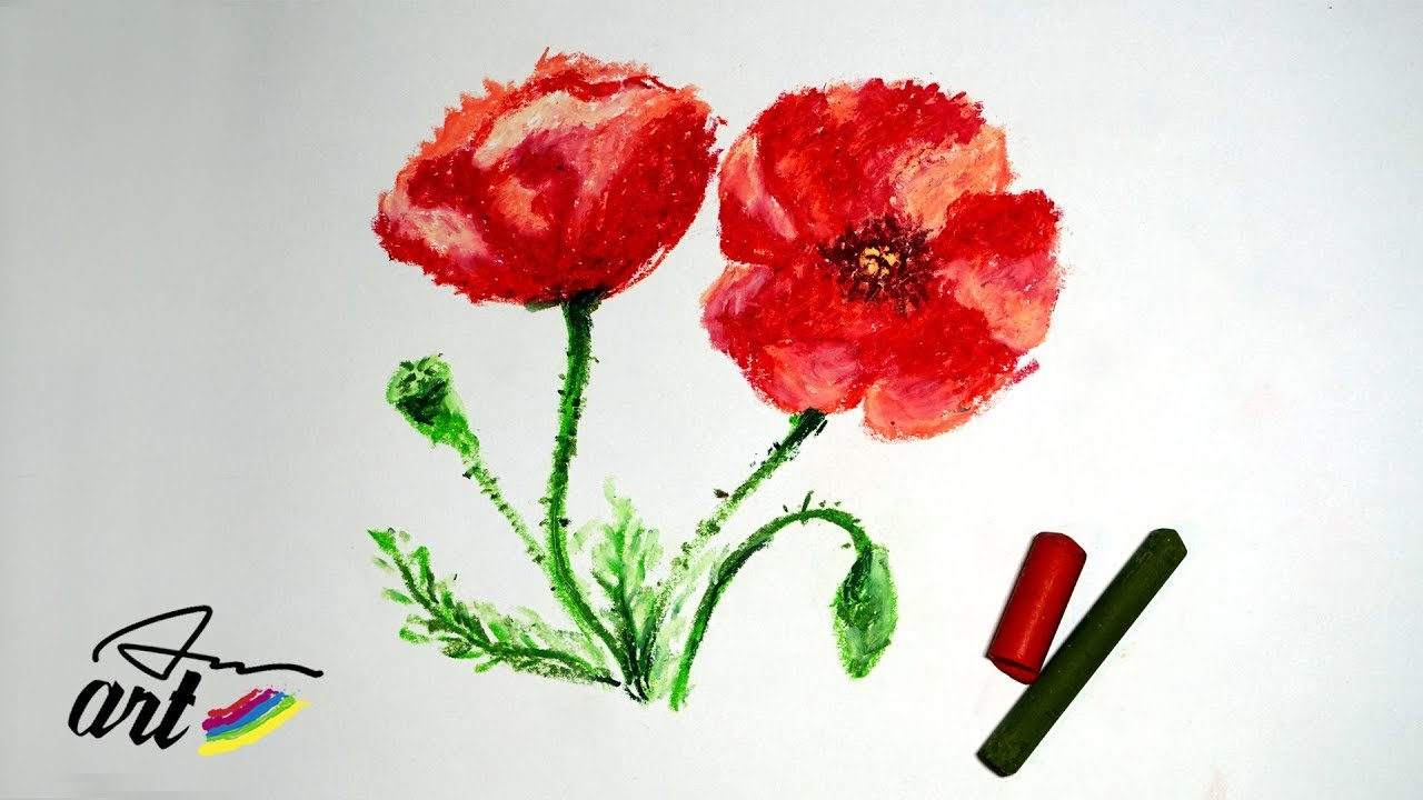 How To Draw Poppy Flowers With Oil Pastels Youtube