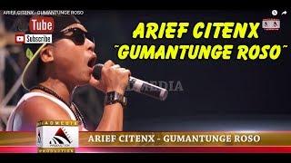 ARIEF CITENX  -  GUMANTUNGE ROSO