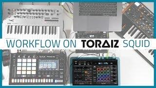 TORAIZ SQUID Tutorials Part 2 - Workflow  | Bop DJ