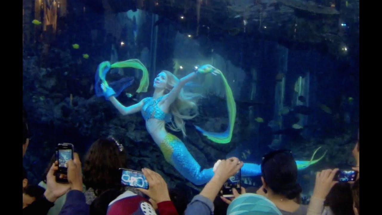 Une sirne au Maroc   Mermaid in Morocco   YouTube