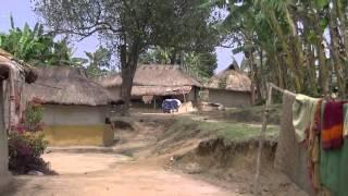 Gambar cover Beautiful Bangladesh Oraon Tribal village Srimangal Bangladesh Video