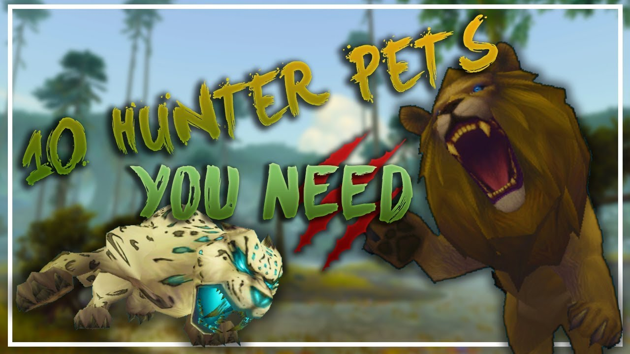 10 Rare Hunter Pets You Need Youtube