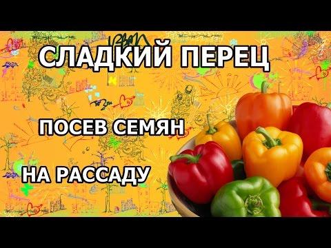Перец фаршированный, рецепты с фото на