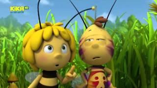 Die Biene Maja Staffel 3 Folge 5 amp; 6 Der getigerte Rufus und Ein Picknick mit Pfeffer German