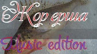 Рыбалка на Братском водохранилище Жор ерша Music edition