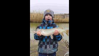 Щука одна за одной Рыбалка зимой