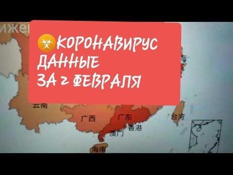 ☣Коронавирус☣ из Китая - Tere LifeVlog (Таблица реальных данных 02.02.2020)