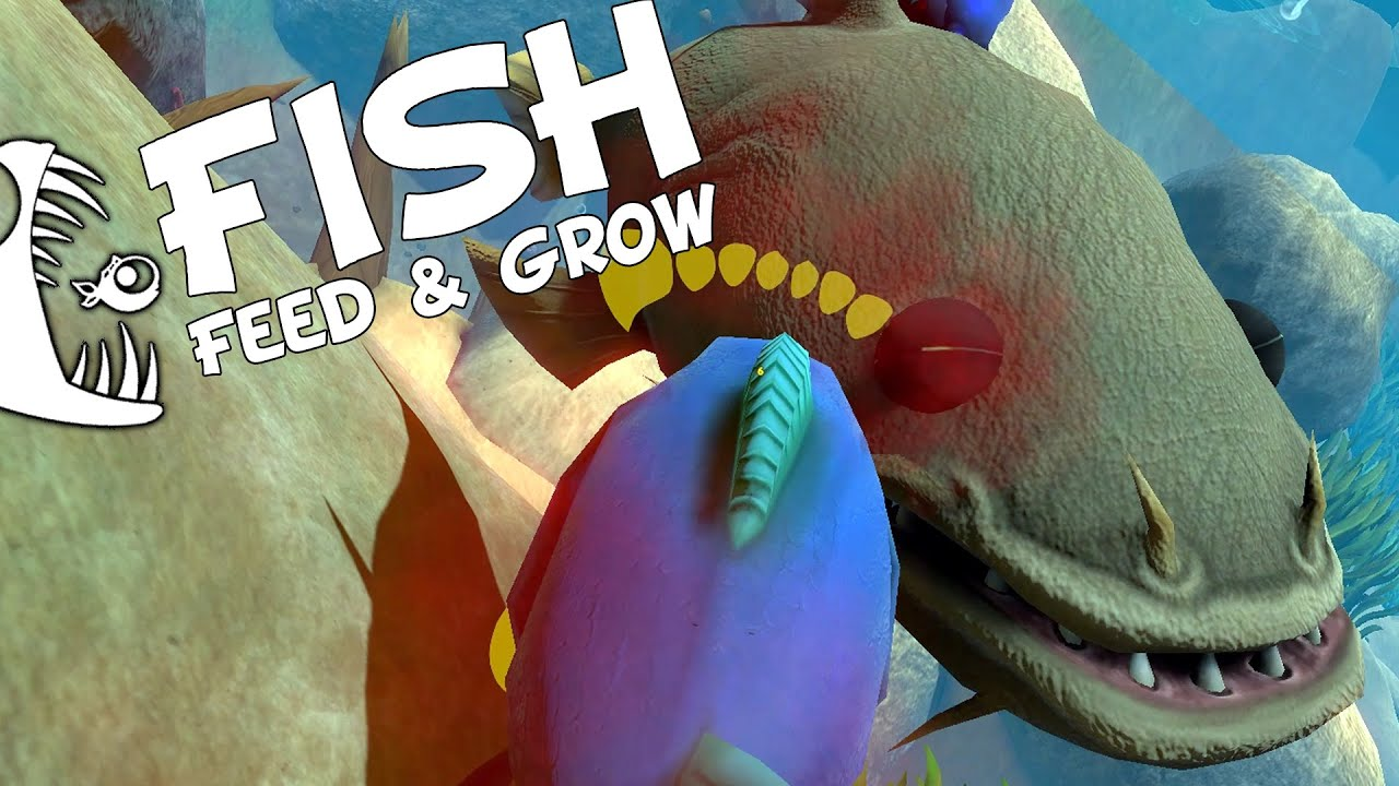 Piranhas vs catfish new river level feed and grow for Feed and grow fish the game