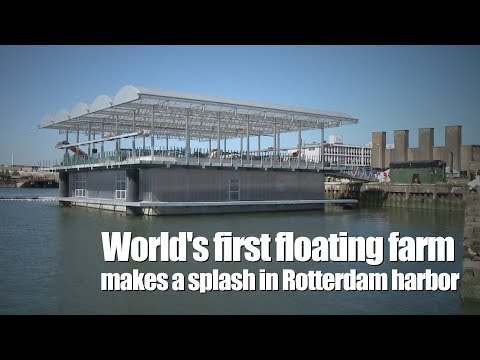 World's first floating farm makes a splash in Rotterdam harbor