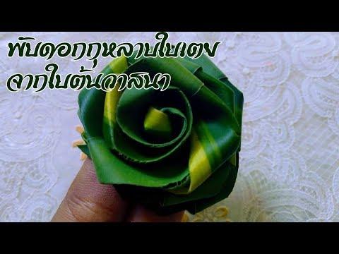 พับดอกกุหลาบใบเตย จากใบต้นวาสนา