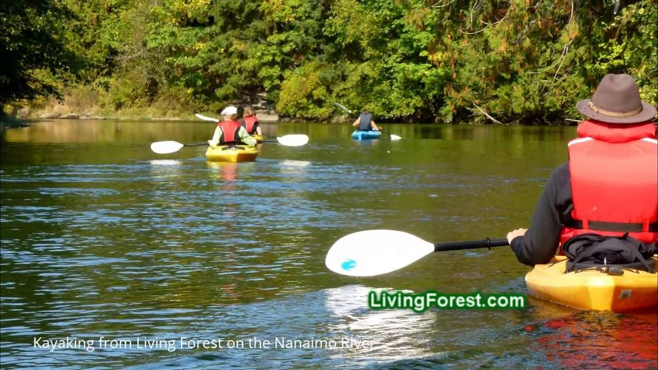 salmon kayaking on the nanaimo river from living forest. Black Bedroom Furniture Sets. Home Design Ideas