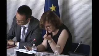 Audition de Nathalie Loiseau - Ministre des Affaires européennes