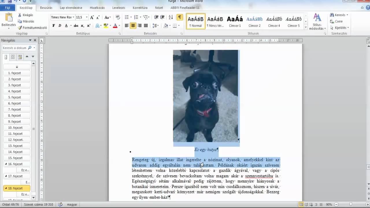 önéletrajz fénykép beillesztése Kép beillesztése Microsoft Word 2010 ben e könyv készítéséhez  önéletrajz fénykép beillesztése