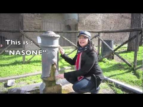 Marta's Road Book #5 : ROME the fountains  - my American friend