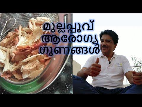 Jasmine Tea Benefits in Malayalam   മുല്ലപ്പൂവ്ആരോഗ്യ ഗുണങ്ങൾ