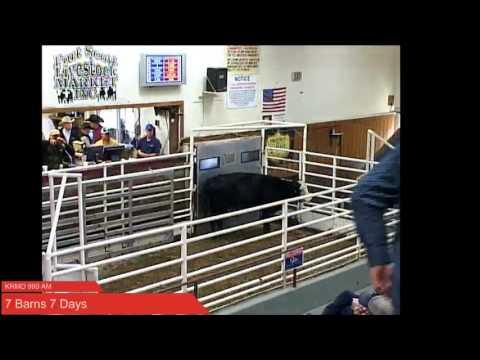 7 barns 7 days at Fort Scott KS