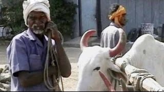 A report on farmer suicides in Vidarbha (Aired: April 2008)