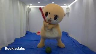 Cute Mascot Chiitan Tries to Smash Watermelon 🍉