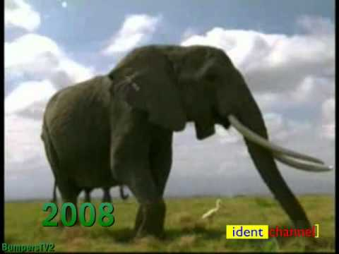 Animal Planet 1996 2008 Youtube