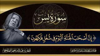 الشيخ القارئ وليد ابراهيم الفلوجي - ماتيسر له من سورة يس