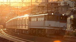【甲種輸送】 EF65-2086+京成3000形6両 湯河原~真鶴通過
