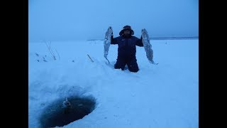 Зимняя рыбалка.Супер улов!!!