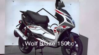 Wolf Blaze 150cc at Cyclehouse 609 242 8477
