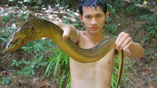 Deep Fried Eel - Cooking Eels Recipe in Forest Eating Delicious to Survival