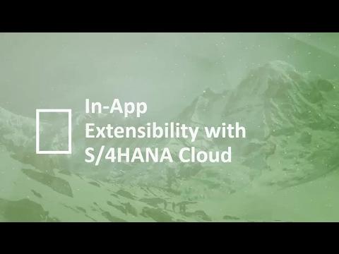S/4HANA Cloud In App Extensibility