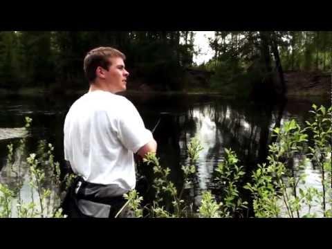 Gäddfiske i hälsingland