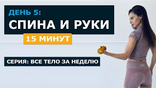 15 мин Тренировка на СПИНУ БИЦЕПС ТРИЦЕПС все тело за неделю