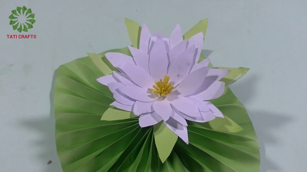 Crepe Paper Water Lily - Ash and Crafts | 720x1280