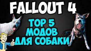 Fallout 4 - Top 5 модов для собаки