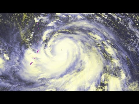 Typhoon Hagibis Live Updates