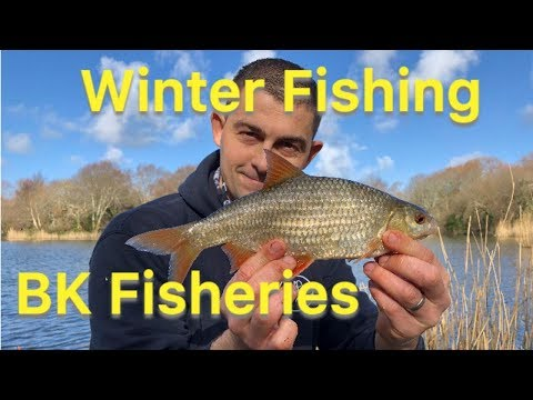 Roach Fishing UK - Coarse Fishing UK - Winter Lake Fishing