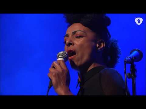 Radio 1 Jazz Sessie Integraal